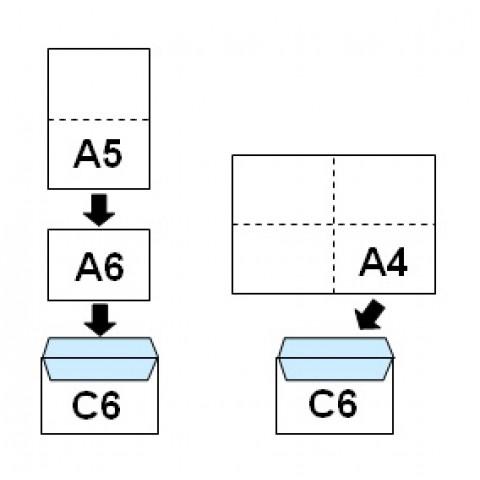 Plic C6