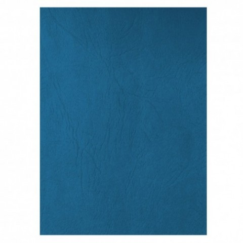 Coperta carton, imitatie piele, albastru, Ecada