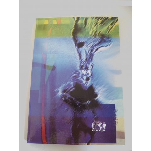 Registru cartonat A4, 100 file, matematica, coperta lucioasa