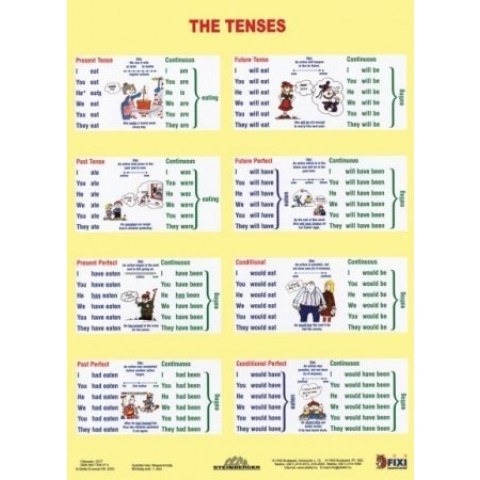 The Tenses / Sentence Building